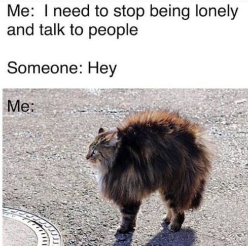 180+ Introvert Memes That Will Speak Your Mind For You