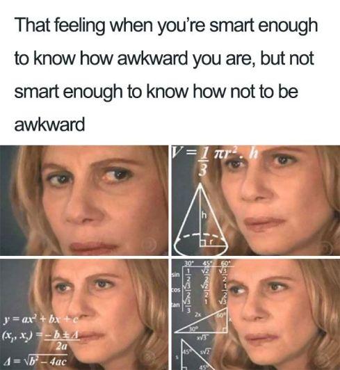 Funny-Introvert-Meme (1)